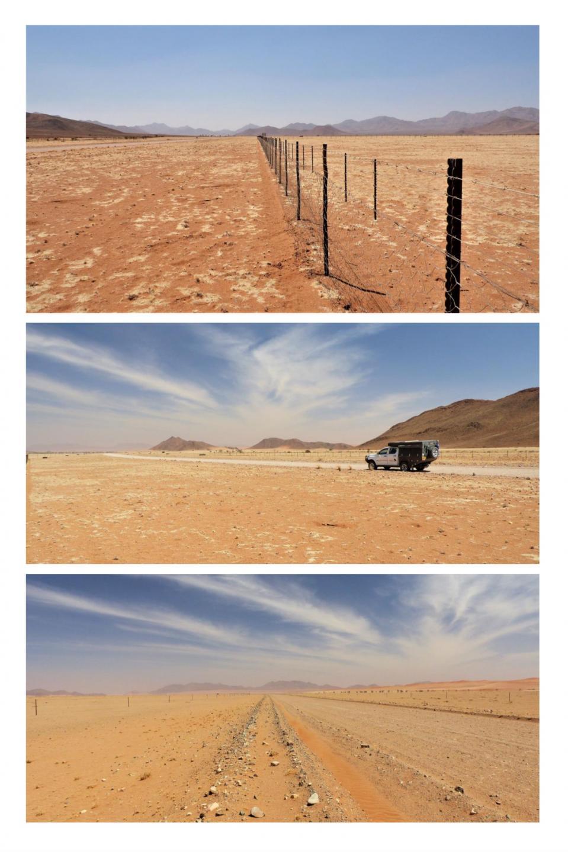 Wüsten In Amerika