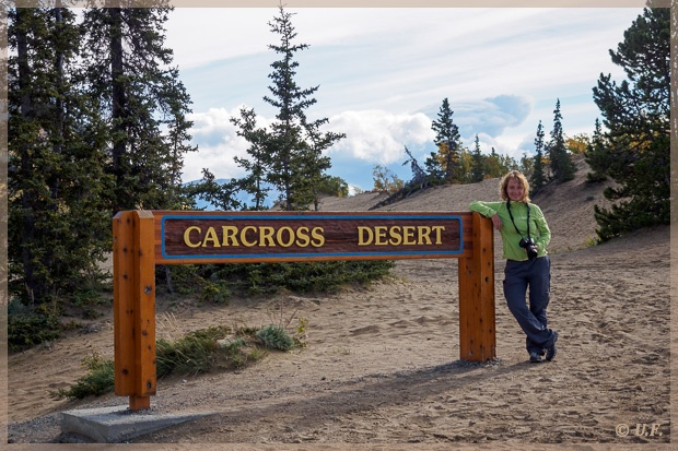 carcross men It looks like a desert but it is really the remains of an ancient lake if this were a real desert, it would have a hot, dry climate the carcross dunes are a.