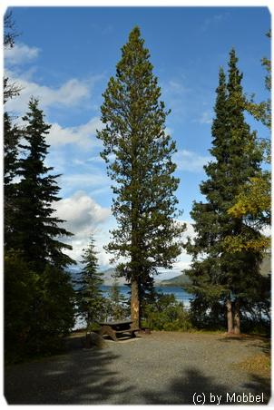 Kinaskan Lake Provincial Park, Campground, Stewart-Cassiar